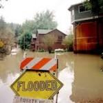 flood survey - elevation certificate